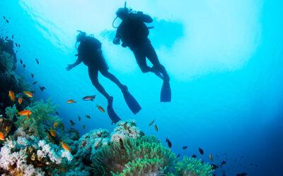 Uitleg van duikersziektes/ decompressieziekte. Aan het woord René Groot.